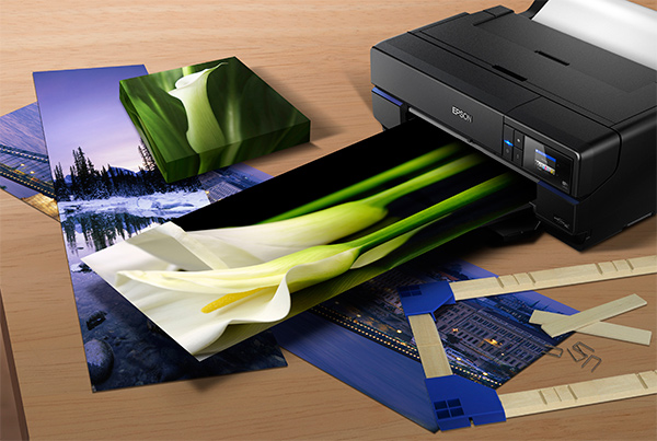 Epson SureColor SC-P800 A2+ Photo Printer - Photo Review