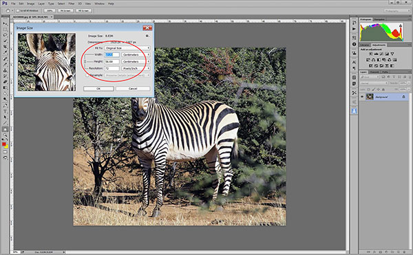 Resizing and cropping - Photo Review